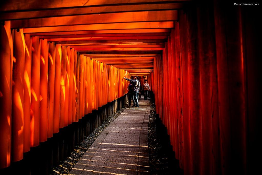 1000 Tori in Fushimi Inari